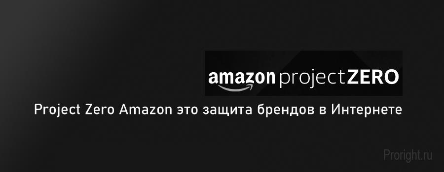 Project-Zero-объединяет-сильные-стороны-Amazon-и-брендов.
